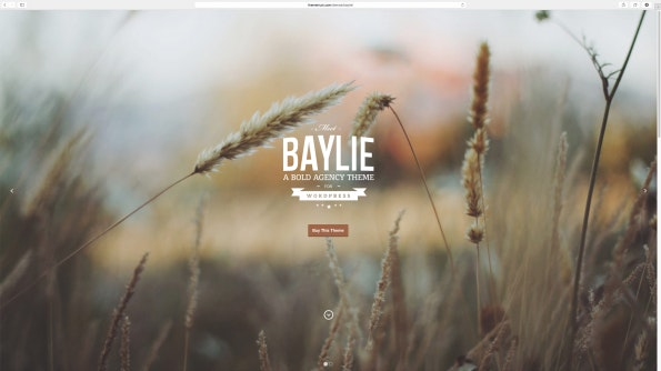 Baylie: Parallax WordPress Theme