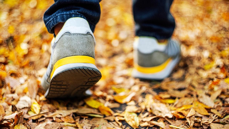 Wie ich es geschafft habe, jeden Tag 10.000 Schritte zu gehen – trotz Homeoffice