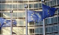 Kampf gegen Google: Ecosia und Duckduckgo wenden sich an die EU-Kommission