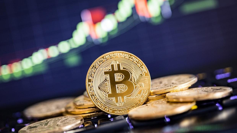 Bitcoin Kurs von 500.000 US-Dollar? – Cathie Wood bullisch auf BTC