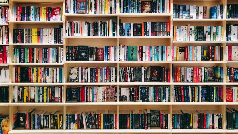 Bewerbungs-KI rankt Kandidaten mit Bücherregalen im Hintergrund besser
