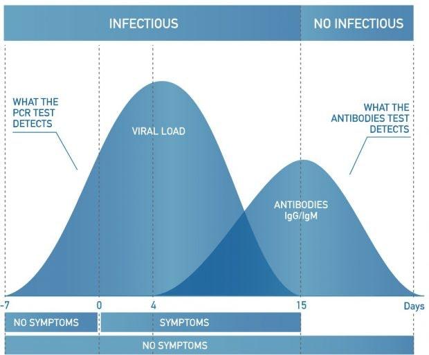 Antikörper-Schnelletst vs. PCR-Test